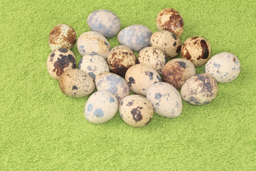 Quail eggs on a green background.