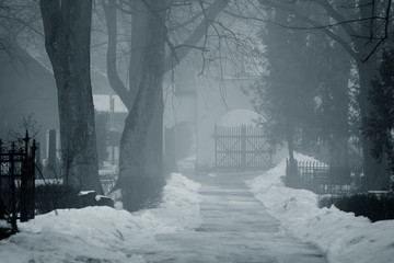 fog at the cemetery