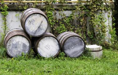 Old stacked beer barrels