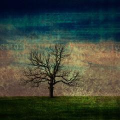 grunge data tree