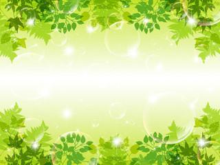 葉 背景 植物 シャボン玉