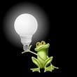 ranocchia lampadina