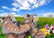 Wanderschuhe Frühling Wiese Pause