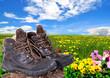 Schuhe Frühling Wiese