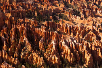 Bryce Canyon National Park USA