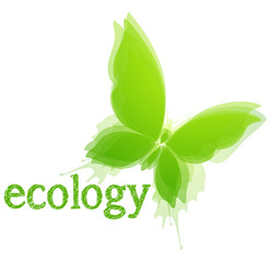Concept Ecology. Butterfly