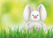 Vector of spring background  with rabbit in  green grass.