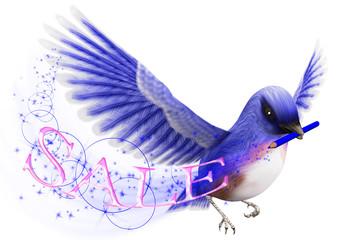 青い鳥と色鉛筆とSALE