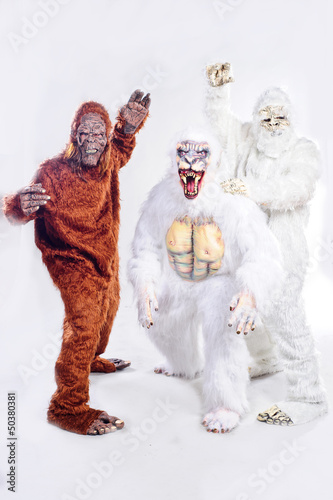 Bigfoot, Yeti and Snowman