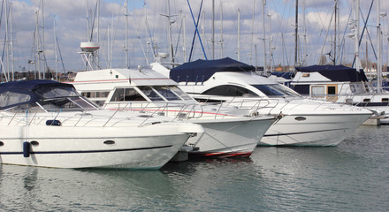 Luxury boats moored at a marina