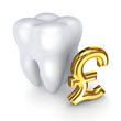 Tooth and symbol of pound sterling.