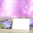 Hintergrund flora mit Textschild