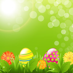 Green Border With Grass And Color Eggs