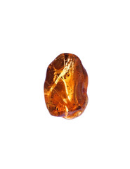 Amber, Baltic, natural ,light colors