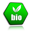 bio with leaf sign in green button