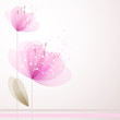 vector background with Flower 22