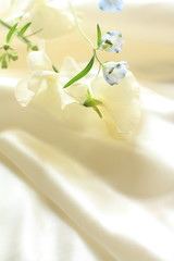 pink sweet pea and delphinium on silk for background image