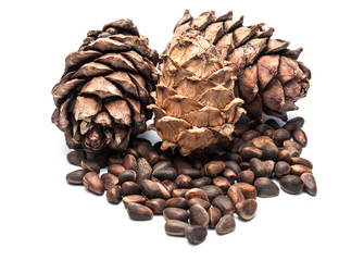 Pine cones and nuts.