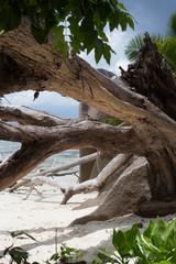 Plage Anse source d'argent à La Digue aux Seychelles