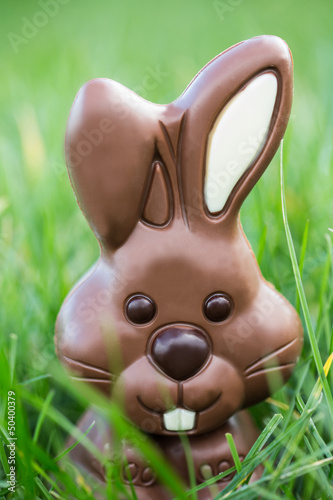Chocolate bunny nestled in the grass