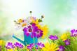 Fototapeten,blume,gartenarbeit,gärten,gießen