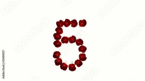 Countdown, Conto rovescia, intro, isolated, rose, matrimonio