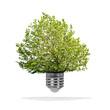 Arbre poussant dans une ampoule - concept écologique