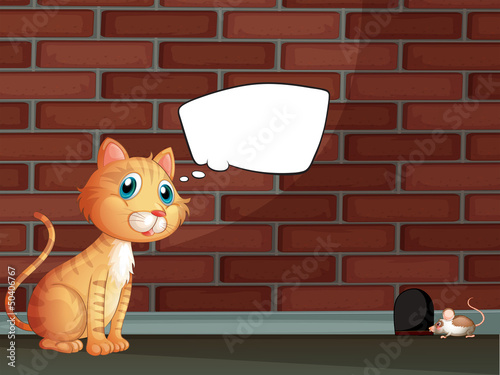 An orange cat with an empty callout