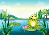 A happy frog above a water lily