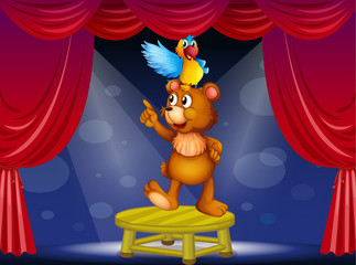 A bear and a parrot in the circus