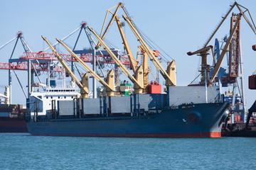 bulker carrier ship