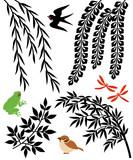 Fototapety 柳と笹と藤の花