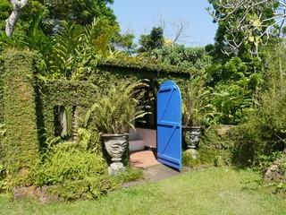 A blue door in a tropical garden in Sri Lanka