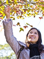 Woman hand holding autumn leaf