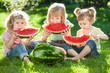 Children having picnic in summer