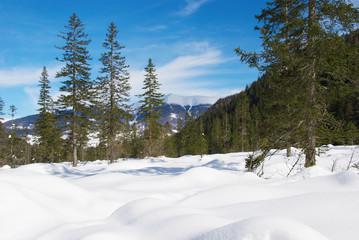 Panorama della Val Fiscalina
