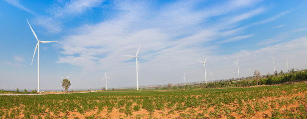 Eco power, wind turbines field panorama