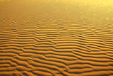 sand in desert ripple background