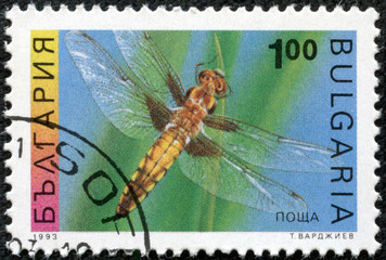 stamp shows the insect, Four-spotted Chaser