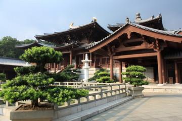 Nan Lian Garden, Chi Lin Nunnery, Hong Kong.