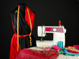 Sewing machine, dummy and other sewing equipment isolated