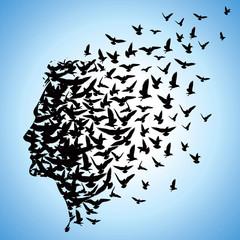 flying birds to human head