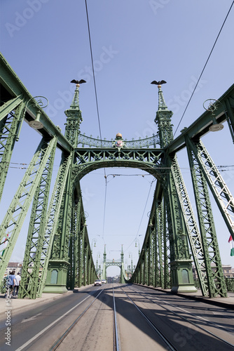 "The  bridge"" Freedom"" in Budapest"
