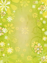 spring white and yellow flowers over vintage green background
