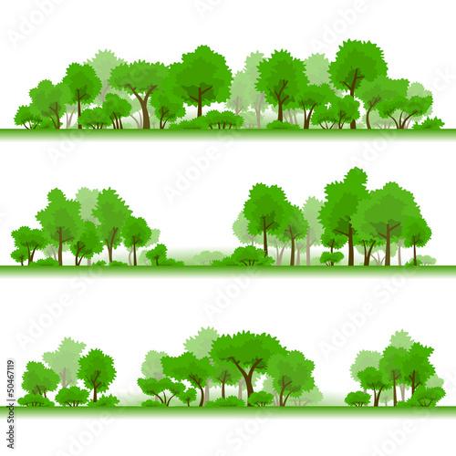 Forest. Samples 1.