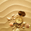 sea shells with sand as background and old compass