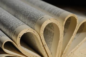 Hojas de Libro Antiguo