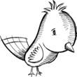 Cute Doodle Sketch Bird Art