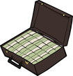Suitcase of Cash