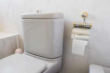 Toilet gray and toilet paper